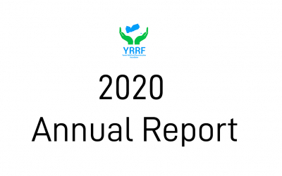 Annual Report: What we accomplished in 2020